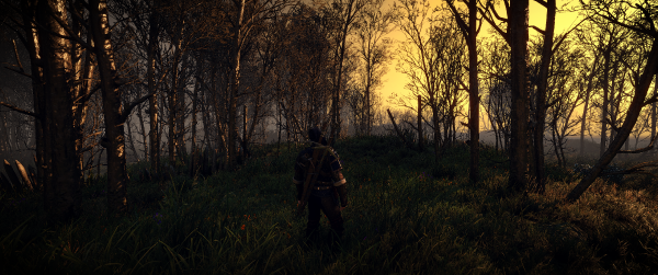 The Witcher 3 Screenshot 2019.05.22 12.42.53.35