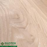san-nhua-glotex-P363