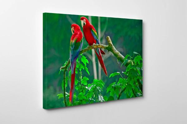 8K-Wallpaper-02-3840-x-2160.jpg